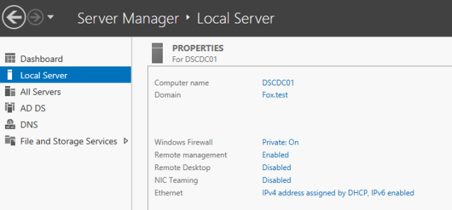 Pre-reboot, our domain settings are listed in server manager