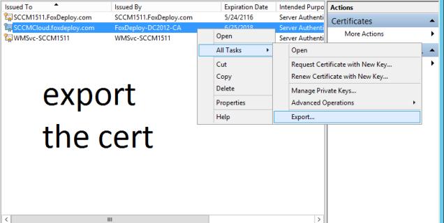 13 export the cert