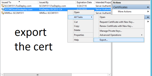13 export the cert