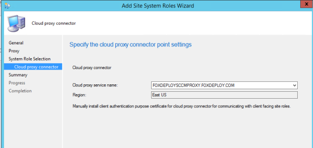 3.2 install the cloud proxy connector point role 2