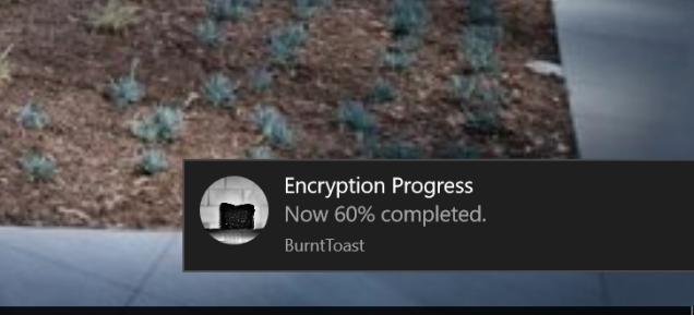 encryption-percentage
