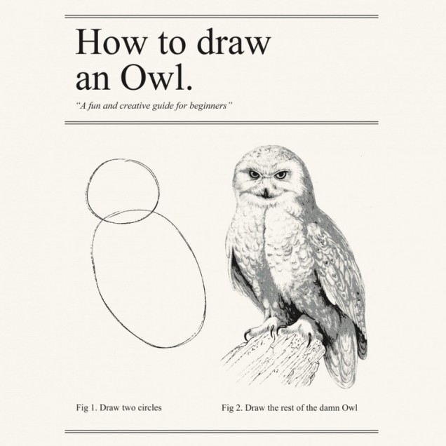 a humorous image showing how to draw an owl in two steps.  The first step is two simple circles.  The next step shows an incredibly ornate drawing of an owl with the instructions 'now draw the rest of the damn owl'